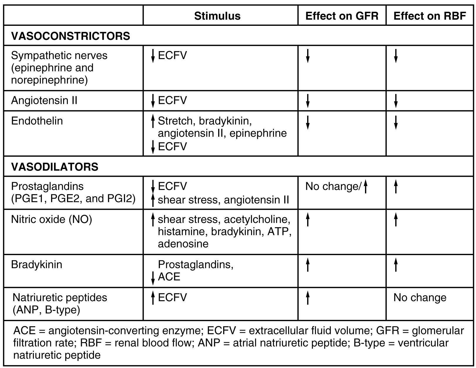 Endocrine Regulation Of Kidney Function Anatomy And
