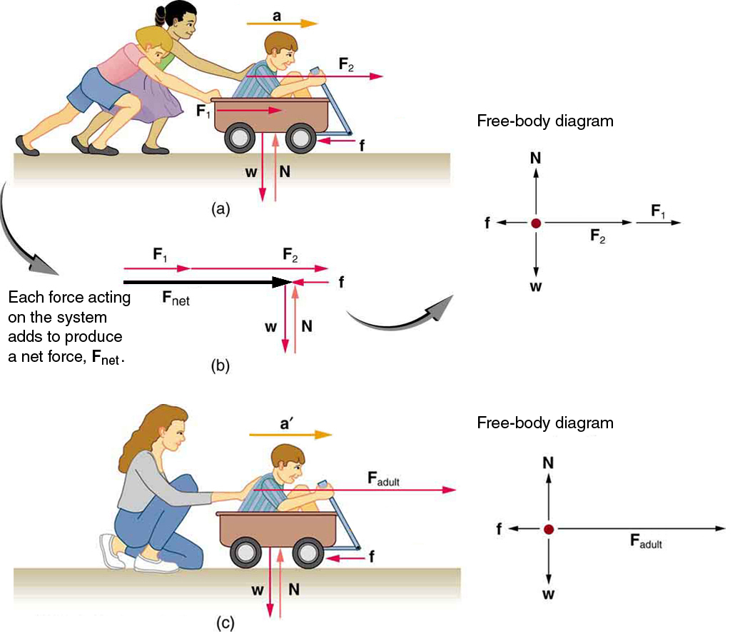 Newton S Second Law Of Motion Concept Of A System Physics