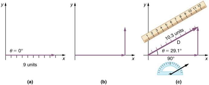 Image result for physics vectors
