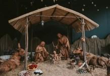 Nativity | Jesus Christ was born in a manger