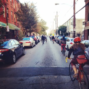 All the ducks in a line. Photo by Melinda Gervasio. Phindie's Official Fringe Bike Tour
