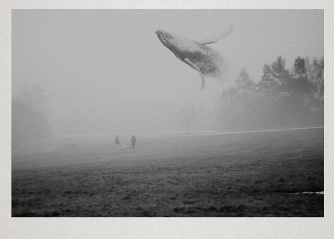 Untitled by Martin Vlach