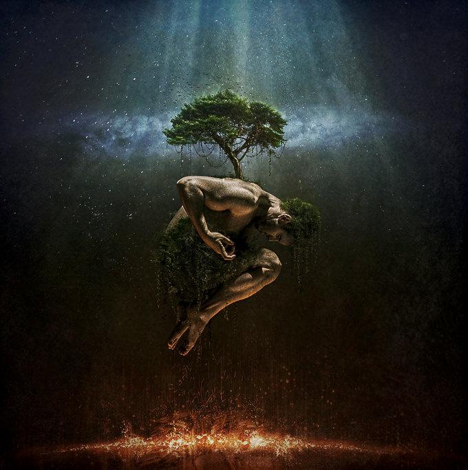 The Tree of Life by Robert Cornelius