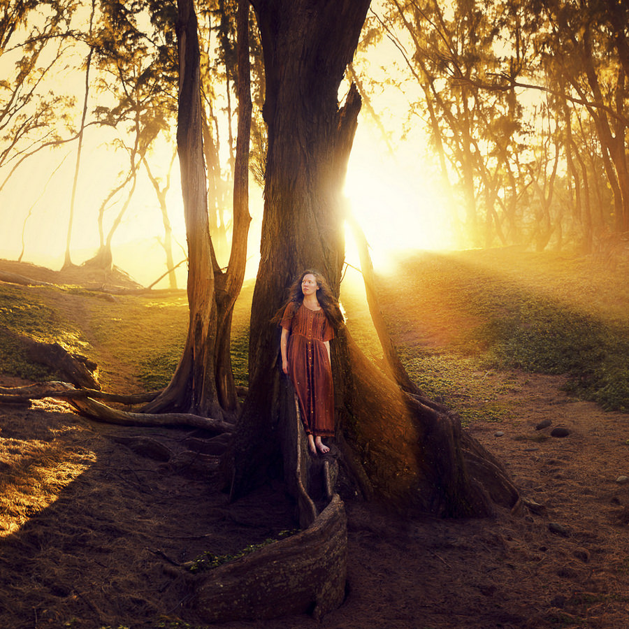 She Speaks for the Trees by Joel Robison