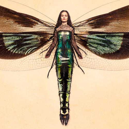 Insect-Woman-Thumbnail