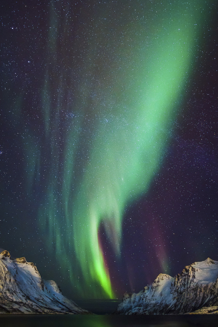 Northern Lights by Ronel Reyes