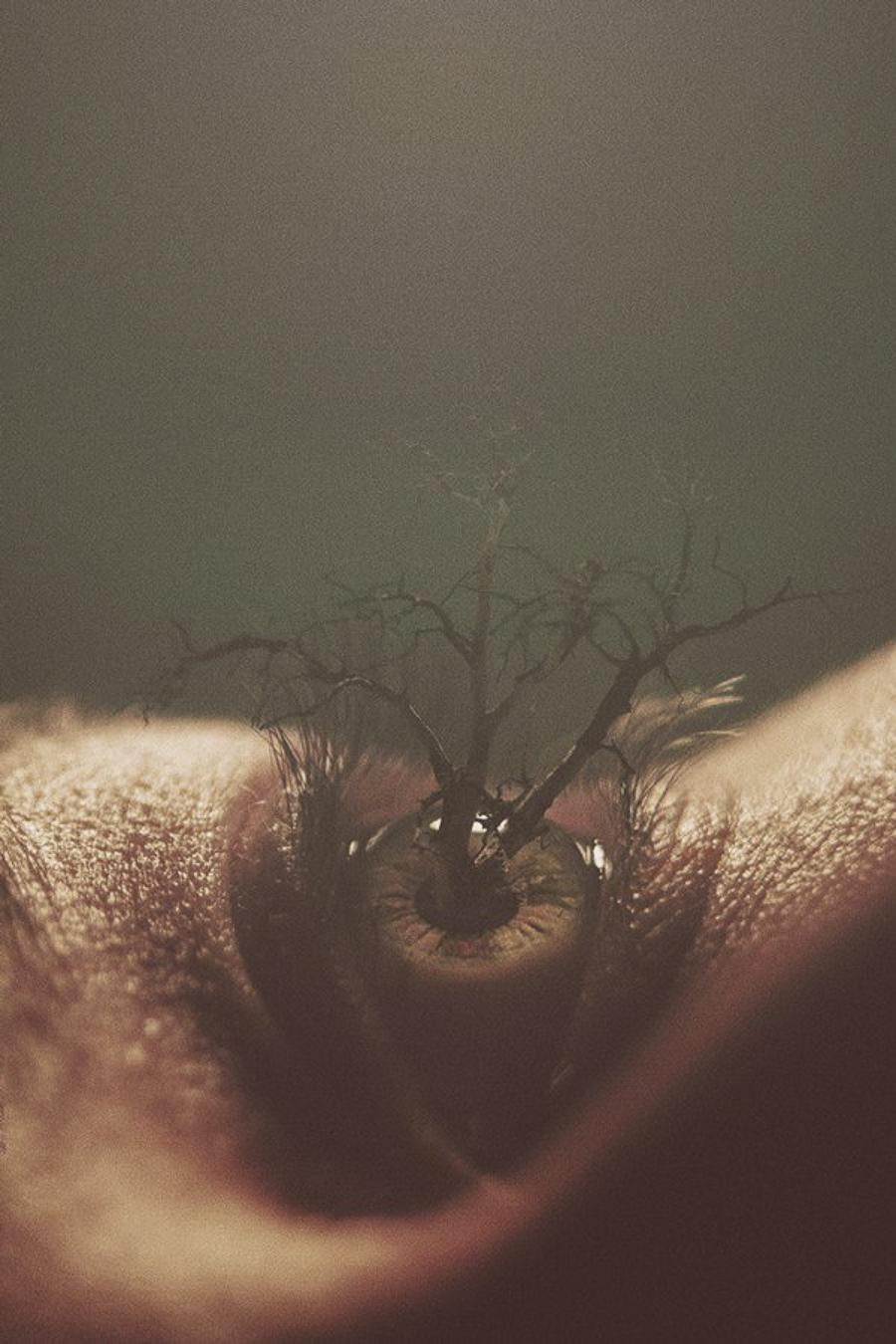 Eyes by Nevan Doyle