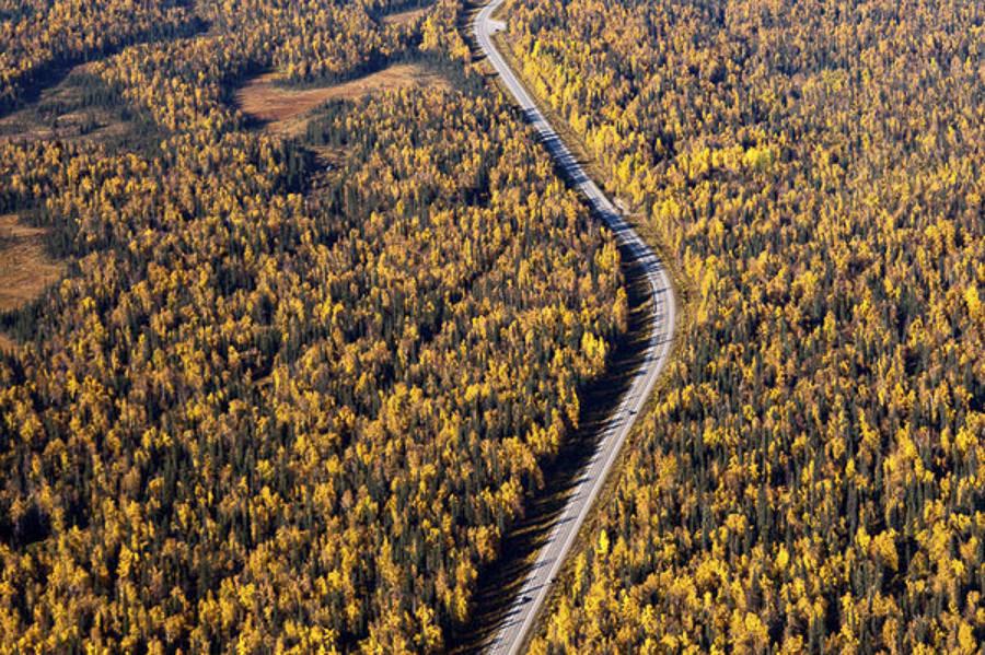Alaska by Navid Baraty