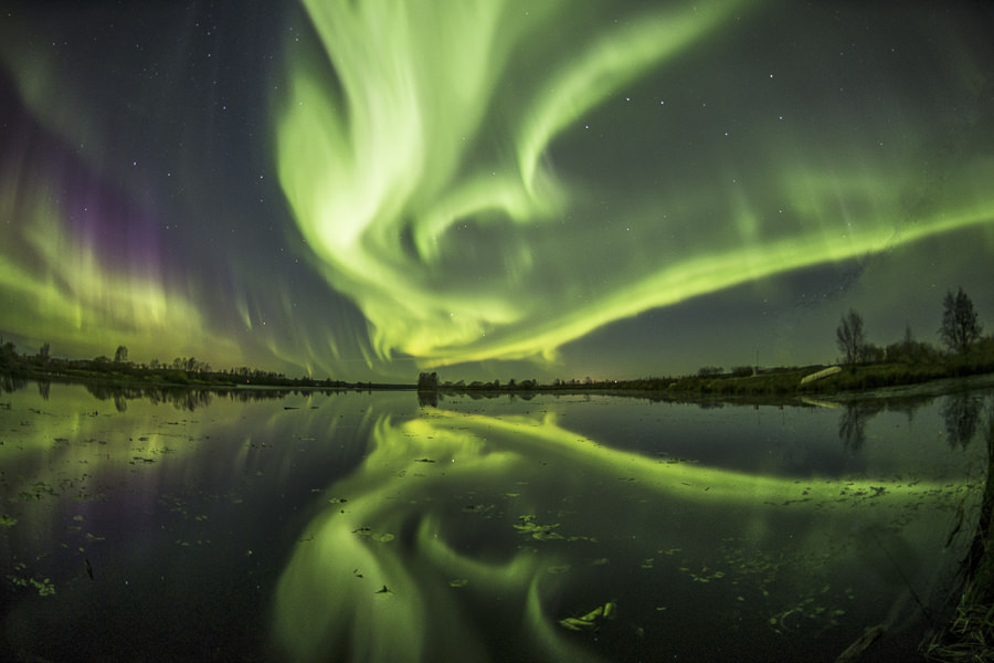 The night of Auroras by Jyrki Liikanen; nature, art and sports photography