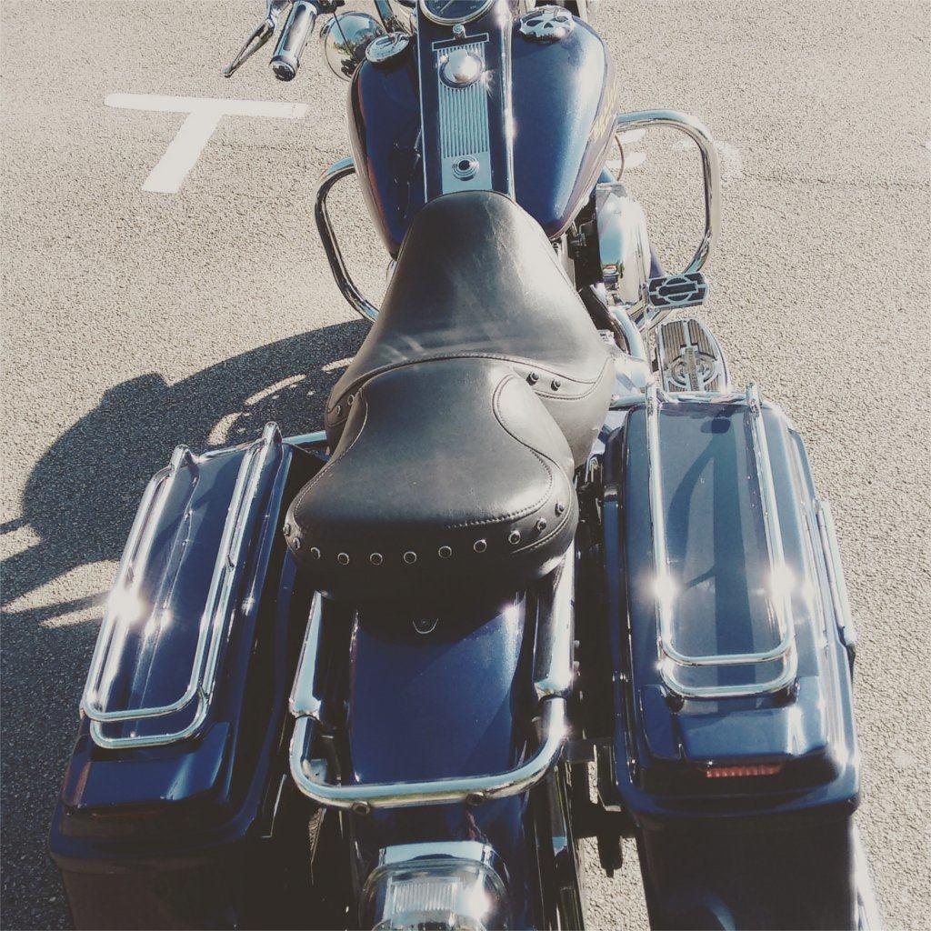 harley motorbike from behind