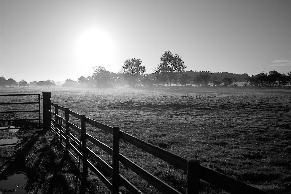 image of morning fog across field