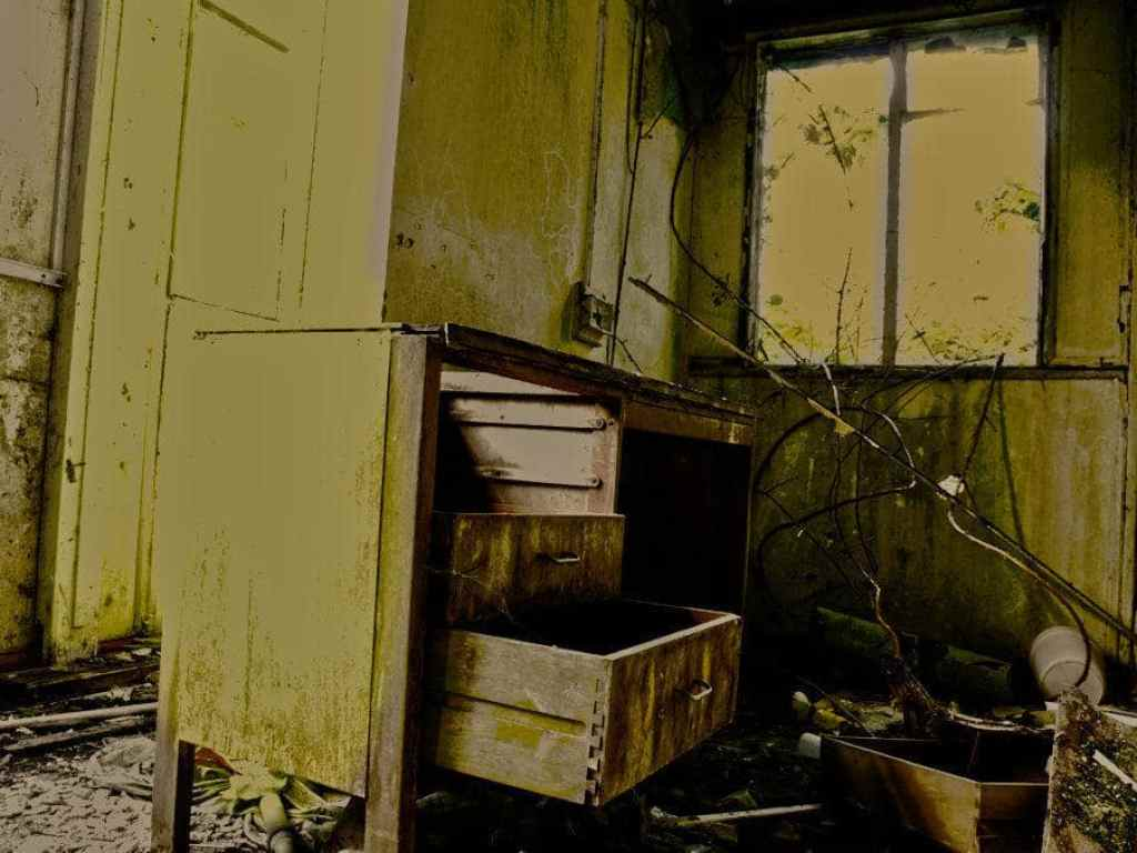 nocton hall office