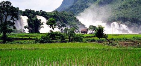Rijstveld bij de watervallen van Ban Gioc (foto: cc-by Mike Williams)