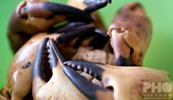 Crab claws (foto: Kim Le Cao © Pho Vietnam)