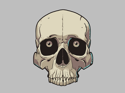 https://dribbble.com/shots/2748217-Skull-illustration