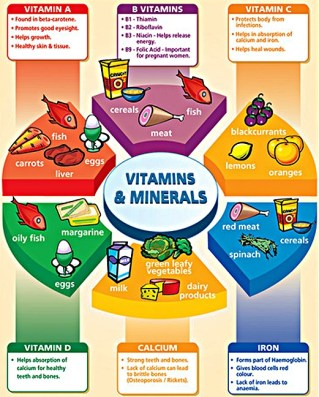 Do I Need a Multivitamin Everything You Need to Know