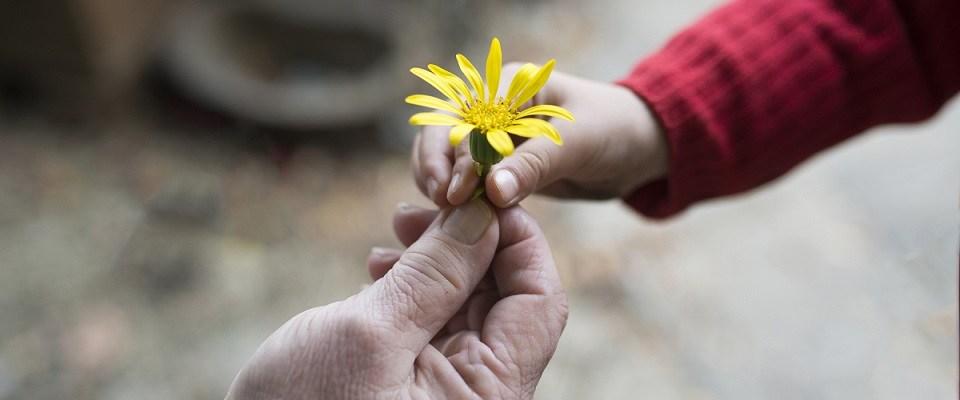 PhoebeMD inspirational blog kindness