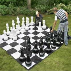 Playing Giant Chess outside on the lawn!