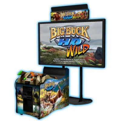 Big Buck hunter arcade game rental
