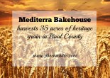 Mediterra Bakehouse harvests 35 acres of heritage grain in Pinal County