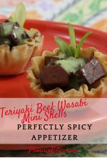 Teriyaki Beef Wasabi Mini Shells