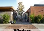 Dog friendly restaurants in Phoenix: Windsor