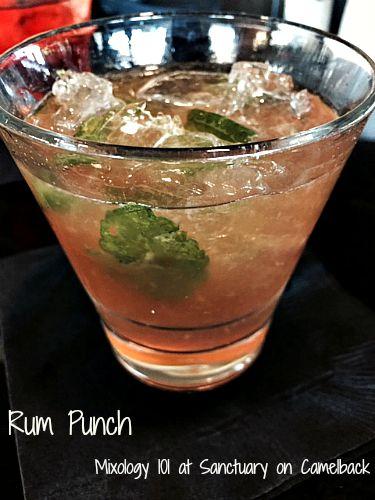 Mixology 101 Rum Punch