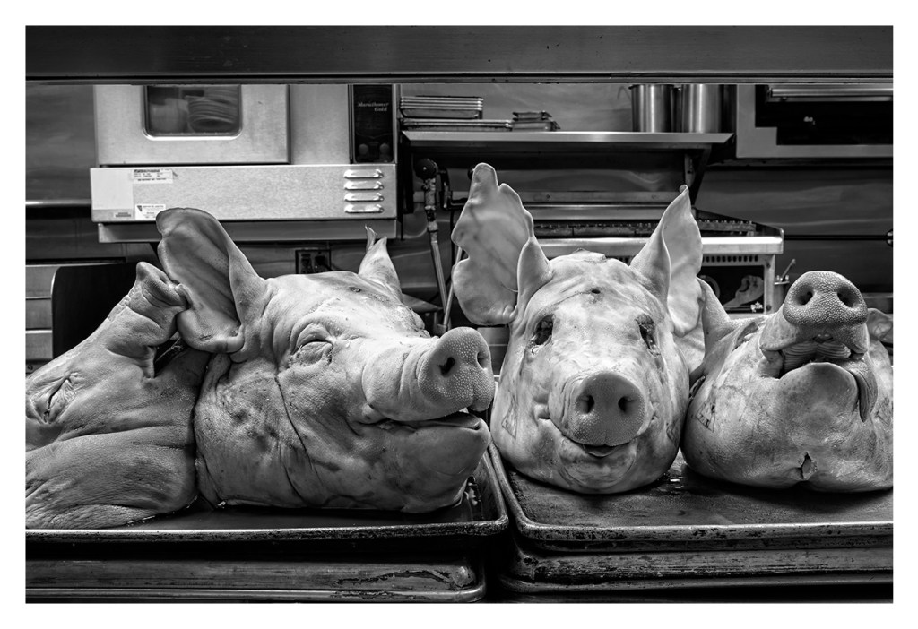 Pig's Head Dinner at Bink's