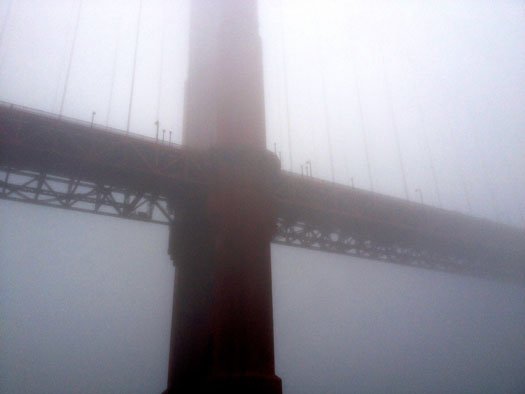 Though it was a foggy day, we were still able to get a peek at the Golden Gate Bridge while sailing underneath!