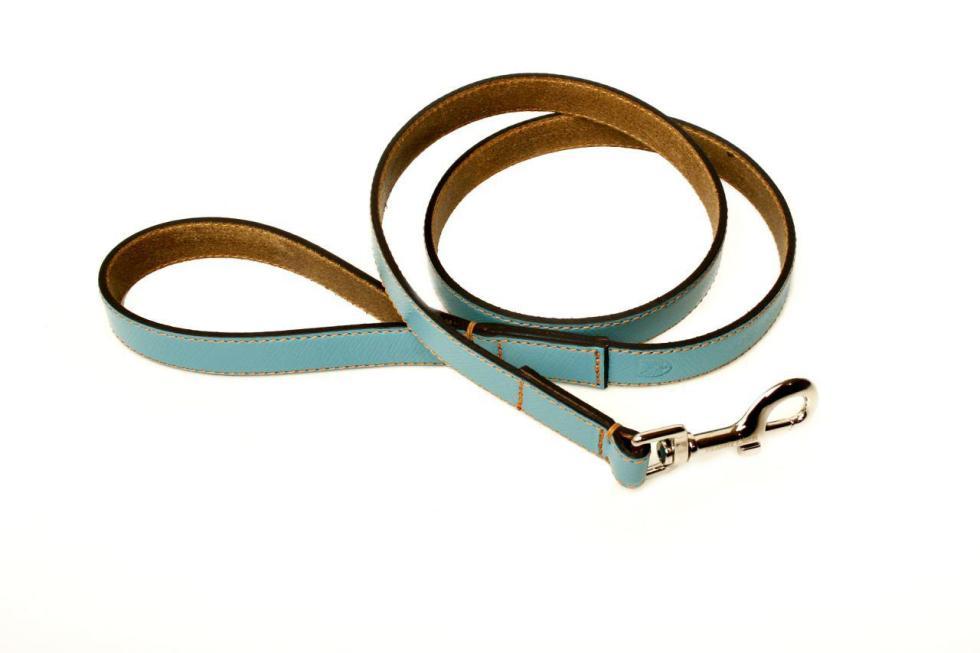 light blue collar & leash