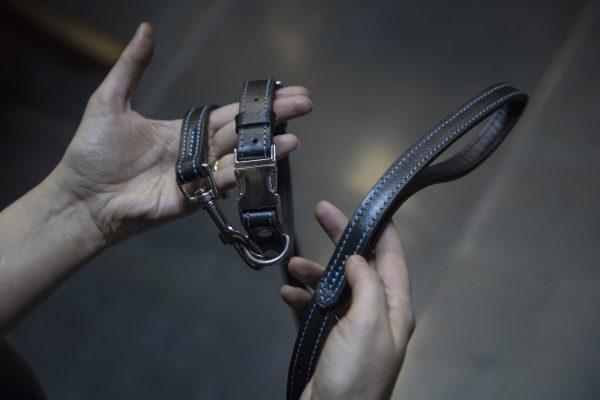 Premium Leather Pet Accessories