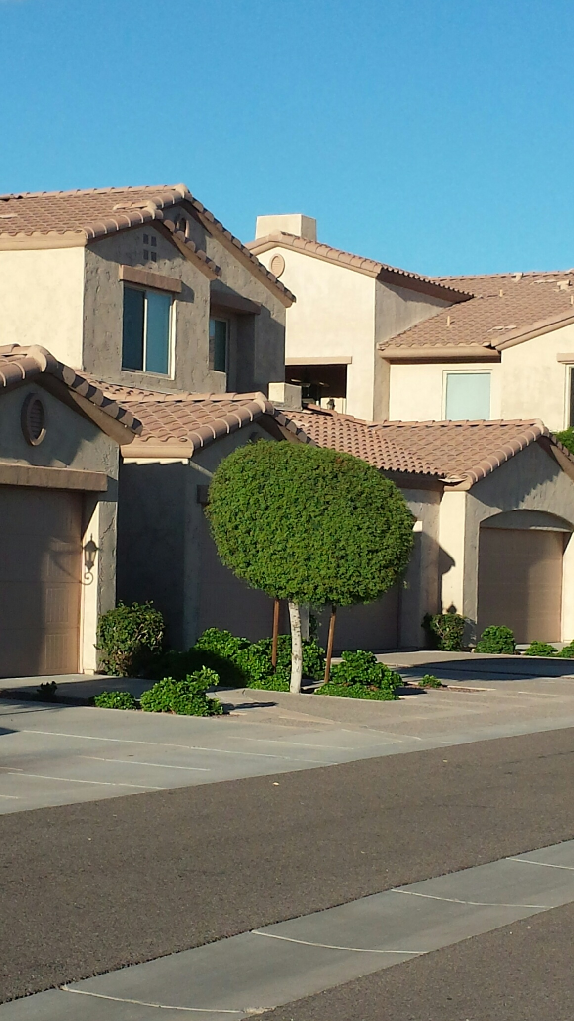 Carino Villas For Sale in Chandler, AZ