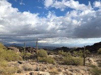 image of cactus, desert and clouds from Phoenix South Mountain park