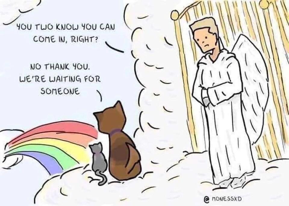The Best Cartoon Ever... 1