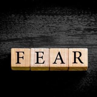 Fear: Duane W.H. Arnold, PhD 19
