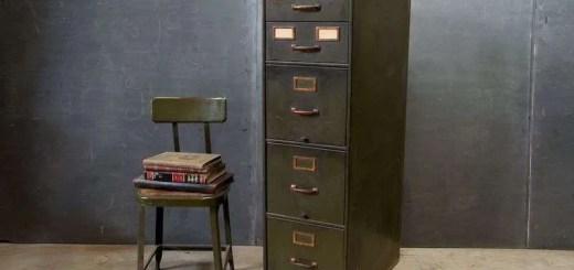 File Cabinet: Duane W.H. Arnold, PhD 6
