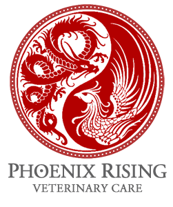 Contact Us, Phoenix Rising Logo