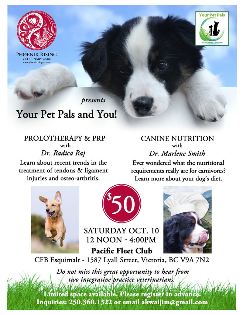 Phoenix Rising Veterinary Care, Your Pet Pals