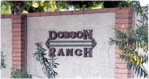 dobson-ranch-homes-in-mesa-az