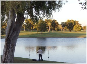 dobson-ranch-park-lake-and-golf-course