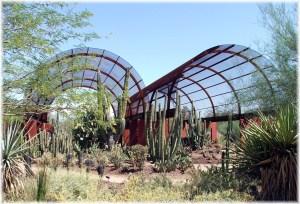 Desert Botanical Garden 3