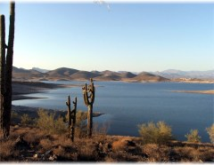 Lake Pleasant view with cactus