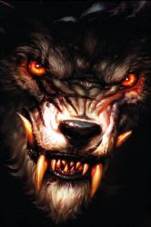 Angry Wolf Wallpaper Download to your mobile from PHONEKY
