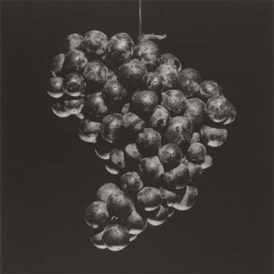 Grapes 1985 Food Photography of Robert Mapplethorpe