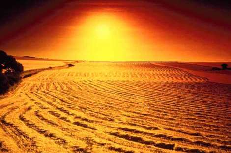desert sunsdt