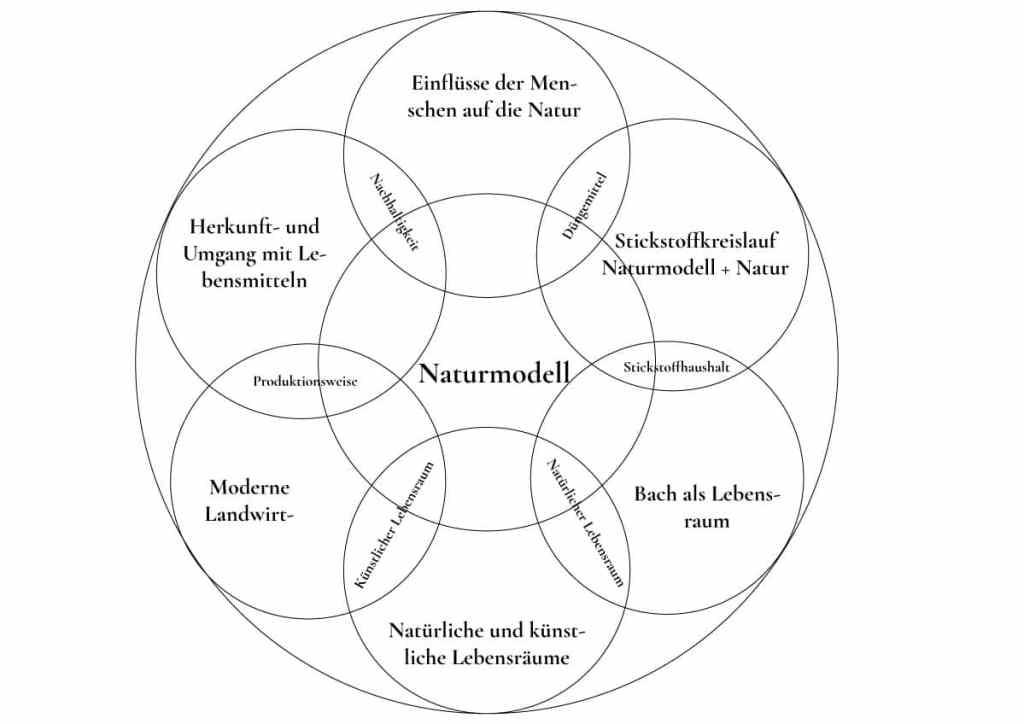 lehrplan21-modulthemenkombination-projektwoche