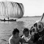撮影年不明 中村由信《帆曳き漁》 茨城,潮来町,水原沖