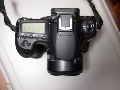 EOS 60D + EF50mm F1.8 II