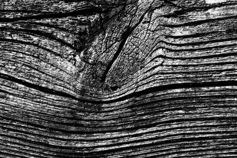 bois brut pour challenge photo 52 n&b