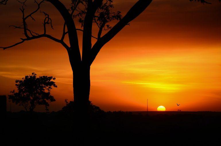 coucher de soleil et contre jour